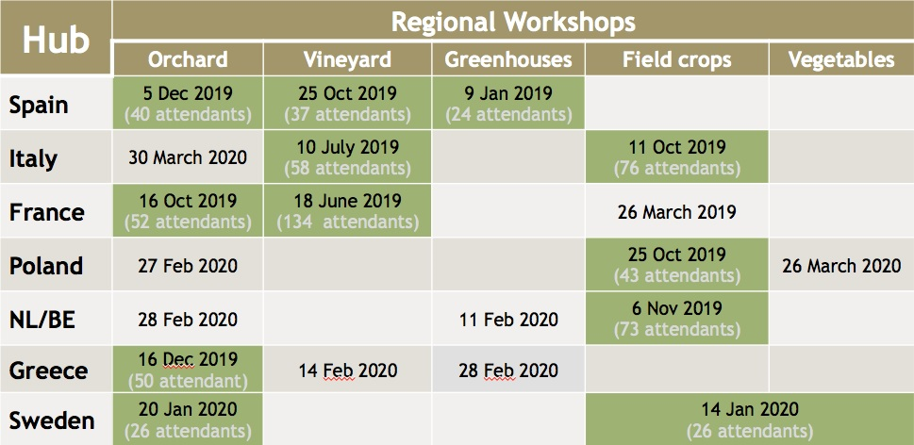 2020 Innoseta Regional Workshops