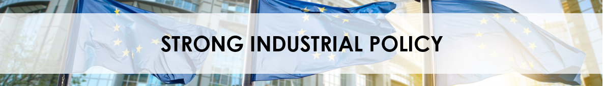 2019 Strong industrial policy banner